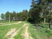Ровный, сухой участок в ДНП Лесное - 80 км Щелковского ш. - д.Юрцово - Фото 3