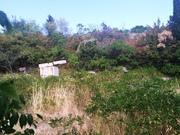 Продажа земельного участка 7.8 соток в Симеизе. - Фото 2