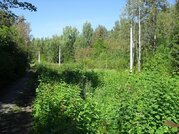 Живописный участок в Шарапово 12 соток - Фото 2