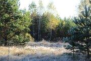 Участок в смешанном лесу на берегу реки Угры - Фото 1
