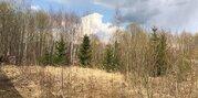 Продается земельный участок в дер. Чеблоково - Фото 1
