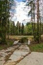 Участок 24 сотки на первой линии Истринского водохранилища - Фото 5