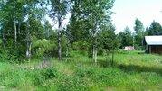 Участок 6 сот в дер. Асташково, ИЖС, эл-во, сосновый бор, озеро, река - Фото 4