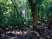 Продается участок 6 соток в экологически чистом районе Ялты - Фото 1