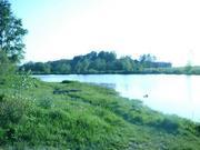 Продаётся земельный участок 24 сотки д. матрёнино, Волоколамского района - Фото 5