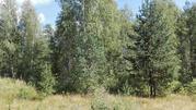 Продам новый дом среди хвойного леса 50 км от Рязани - Фото 3