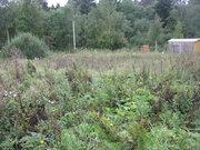 Земельный участок 10 соток в Мошницах - Фото 2