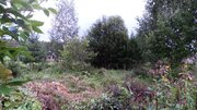 Участок 15 соток на Можайском водохранилище, д. Красновидово. - Фото 5