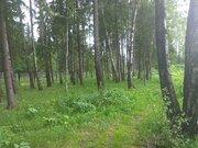 """Лесной участок 40 соток вблизи д. Лисавино кп """"Ласковый Май"""" - Фото 4"""