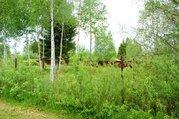 12 соток в СНТ Пульсар д. Васильевское Волоколамского района МО - Фото 4