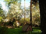 Старый дом на Загорянке лесной участок 30 сот. - Фото 4