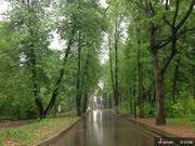 Земельный участок в Новолеоново поселок-парк - Фото 5