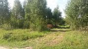 Земельный участок 15 сот ИЖС в д. Соболево - Фото 5