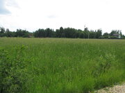 Пять гектаров в Волоколамском районе. Участок 5 гектаров - Фото 5
