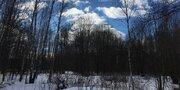 Продается земельный участок в дер. Новозыбинка - Фото 4