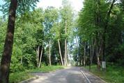 Уникальный экопоселок Новолеоново - Фото 3