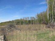7 Га с/х-назначения в дер.Лисицыно - 90 км Щёлковское шоссе - Фото 4
