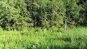Участок 12 соток в деревне на берегу Можайского водохранилища (ПМЖ). - Фото 5