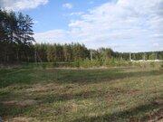 140 сот в СНТ Мишкин лес - дер.Лисицыно - 90 км Щелковское шоссе - Фото 4