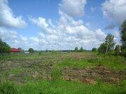 Продается участок 60 соток лпх в д.Чекчино Лотошинского района - Фото 2