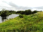 Участок в деревне 30 соток, на берегу реки Протва. - Фото 2