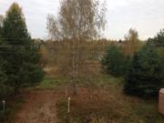 Участок 160 соток, с соснами на 1 береговой линии р.Волга, д. Терехово - Фото 5