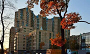 15 300 000 Руб., Роскошная квартира в приморском районе., Купить квартиру в Санкт-Петербурге по недорогой цене, ID объекта - 319547595 - Фото 23
