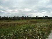 4 Га в д.Никиткино - 110 км Щёлковское шоссе - под ИЖС - Фото 3