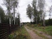 Участок 15с под ПМЖ в Сергейково, свет, тихо, лес, 50 км от МКАД - Фото 5