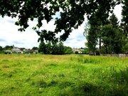Участок с лесными деревьями д. Новинки 47км. от МКАД по Дмитровскому ш - Фото 2