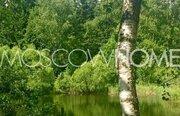 Лесной участок - Фото 4