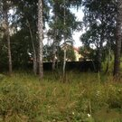 Участок ИЖС, с лесом - Фото 2