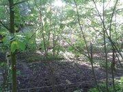 Продается участок 6,5 соток, Зеленоградский, ул. Парковая - Фото 5