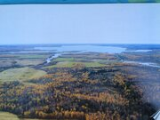Участок 1га на берегу(100м до воды) Яузского водохранилища 160км МКАД - Фото 4