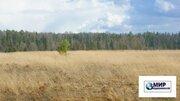 15 соток в деревне Рождественно Шаховского района в 140 км. от МКАД - Фото 2