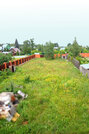Продам дом 260кв.м. на 18 сотках д.Полушкино 16 км от МКАД - Фото 2