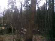 Продается земельный участок 12 соток, д.жёдочи - Фото 2