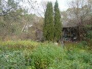 Дом в тихой деревне - Фото 3