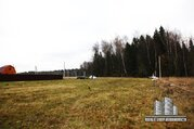 Участок 15 сот, д. Никулино (Дмитровский район) - Фото 5