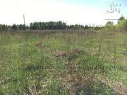 Продажа земельного участка 6,6га Солнечногорский р-н, д. Хоругвино - Фото 4