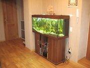 Замечательная квартира с нестандартной планировкой,, Купить квартиру в Рязани по недорогой цене, ID объекта - 321056462 - Фото 5