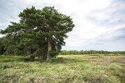 Продается земельный участок в Ступинском районе - Фото 1