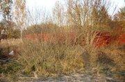 Зем. участок 15 сот в д. Мутовки, Сергиево-Посадский р-н. - Фото 4