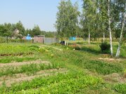 Продается земельный участок в СНТ Полесье д. Липитино Озерский район - Фото 4
