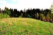 Земельный участок д. Башур, Завьяловский р-н - Фото 2