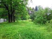Участок в Осеченках 30 соток - Фото 1