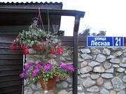 Дом в д.Потапово