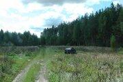 Участок в Киржачском районе с собственным лесом с выходом в лес. - Фото 3