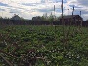 Земельный участок в д. Горки - Фото 2