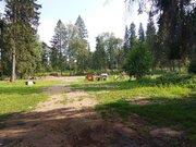Участок 280 соток в д. Ивановское - Фото 5